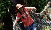 paket wisata canopy trail desa wisata