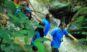 outbound dan camping traveloka telusur